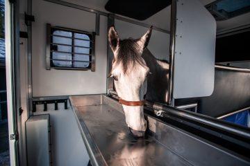 paardenwagen leasen