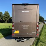 Iveco new daily horsetruck